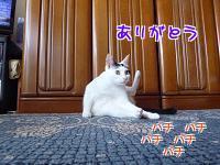 P1220473編集②.jpg