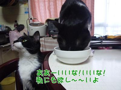 P1220951編集②.jpg