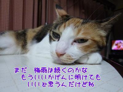P1230284編集②.jpg