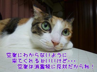 P1230293編集②.jpg