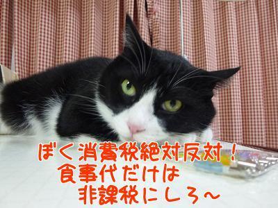 P1230355編集②.jpg