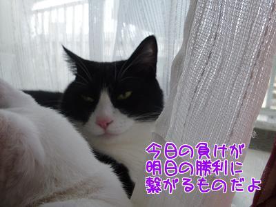 P1230759編集②.jpg