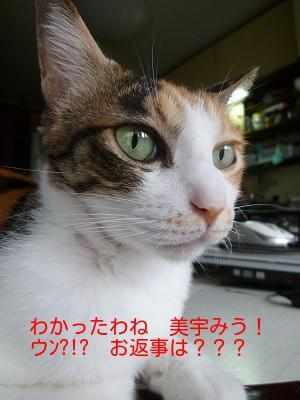 P1270304編集②.jpg