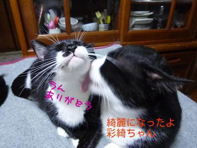 P1270455編集②.jpg