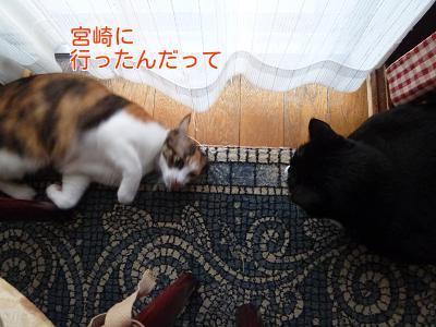 P1270513編集②.jpg