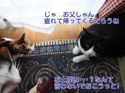 P1270532編集②.jpg