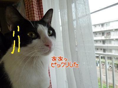 P1280183編集②.jpg
