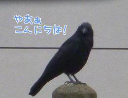 P1280187編集②.jpg