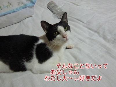 P1350794編集②.jpg