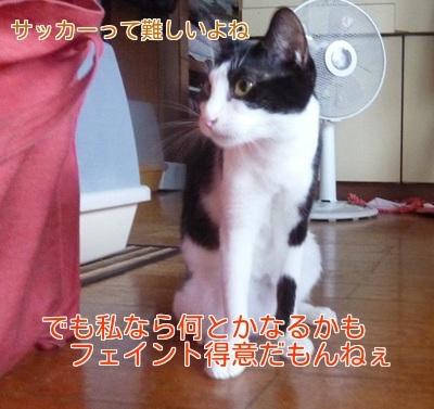 P1360001編集②.jpg