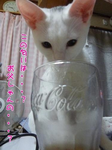 P1360520編集②.jpg