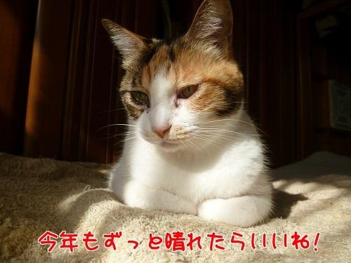 P1380855編集②.jpg