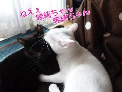 P1390656編集②.jpg
