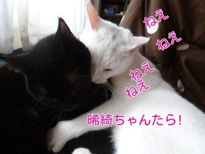 P1390658編集②.jpg