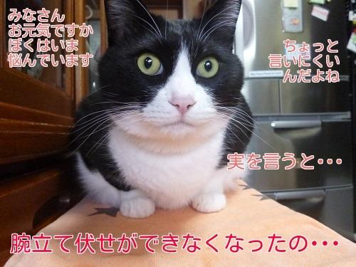 P1390720編集②.jpg