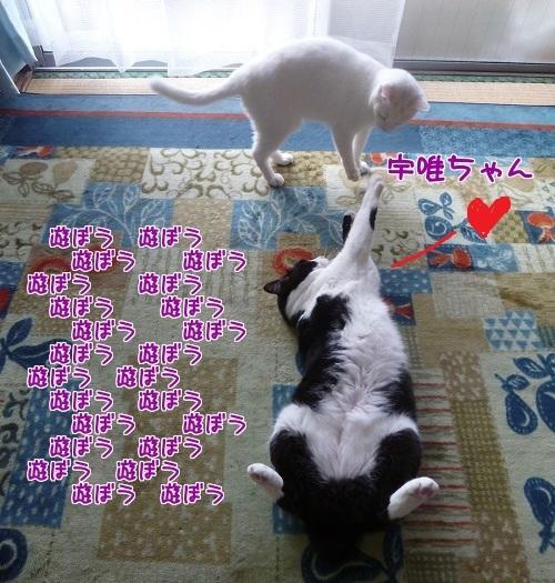 P1420625編集②-1.jpg