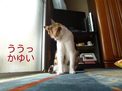 P1430470編集②.jpg