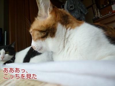 P1440531編集②.jpg