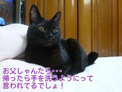 P1450370編集②.jpg