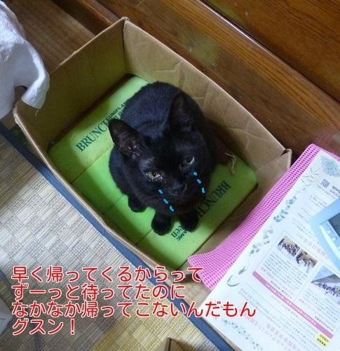 P1450604編集②.jpg