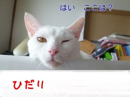 P1450787編集②.jpg