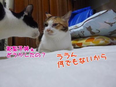 P1460704編集②.jpg