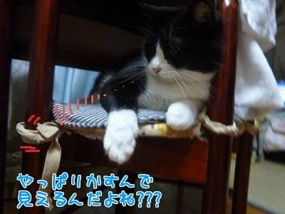 P1470197編集②.jpg
