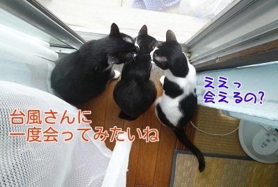 P1470223編集②.jpg