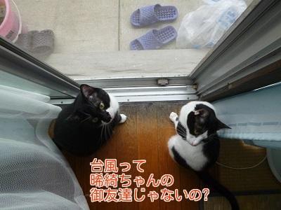 P1470234編集②.jpg