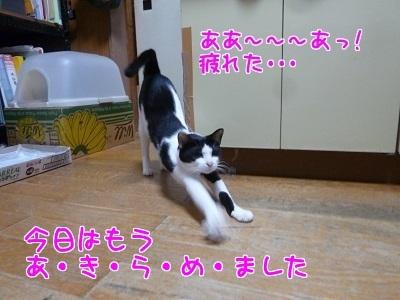 P1470521編集②.jpg