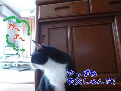 P1500264編集②.jpg