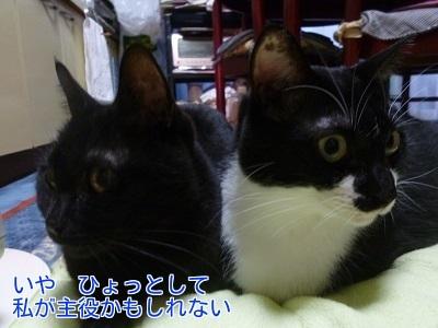 P1530543編集②.jpg