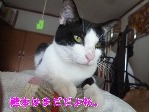 P1570273編集②.jpg
