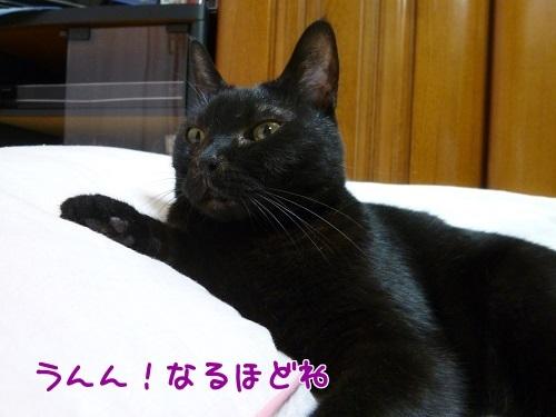 P1570888編集②.jpg