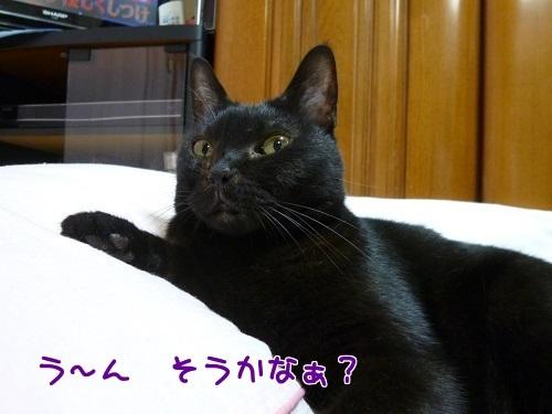 P1570889編集②.jpg