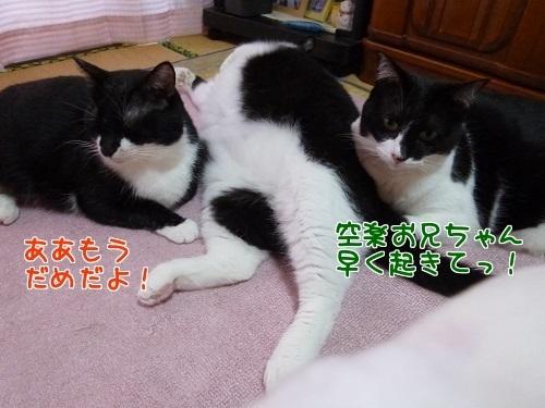 P1580394編集②.jpg