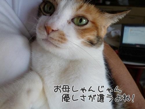 P1590434編集②.jpg