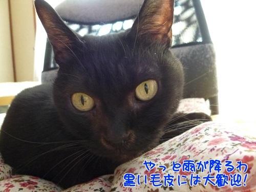 P1600644編集②.jpg