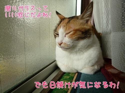 P1600900編集②.jpg