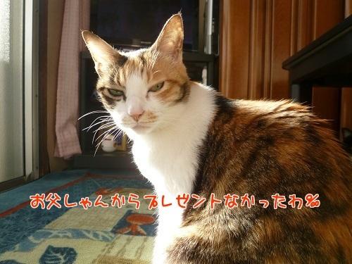 P1630621編集②.jpg