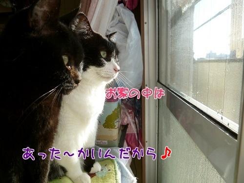 P1640006編集②-1.jpg