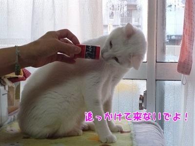 P1640461編集②.jpg