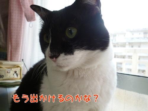 P1650706編集②.jpg