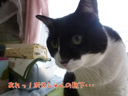 P1650707編集②.jpg