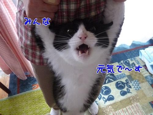 P1670492編集②.jpg