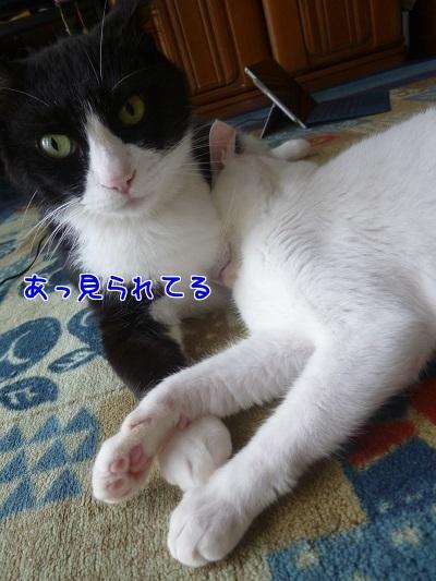 P1670598編集②.jpg