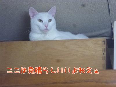 P1680081編集②.jpg