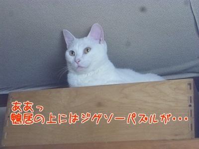 P1680087編集②.jpg