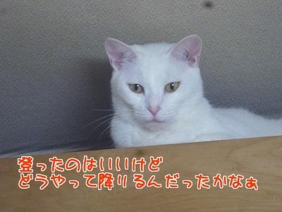 P1680090編集②.jpg