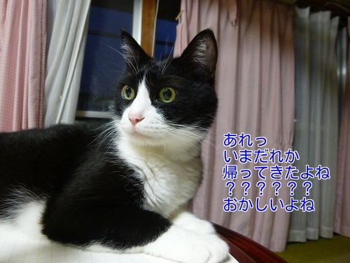 P1680545編集②.jpg